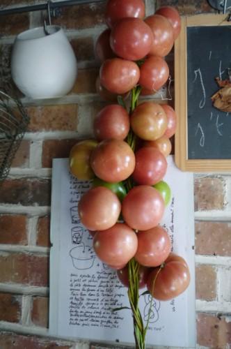 tomates de colgar 2.jpg