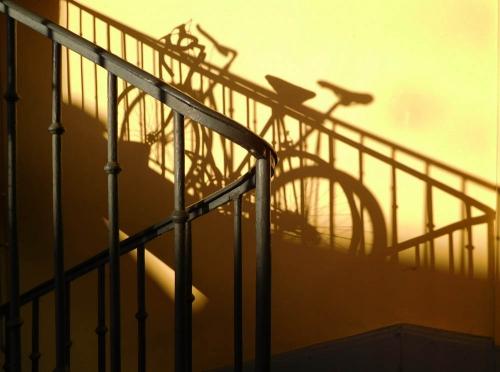 vélo4.jpg