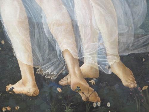 firenze,galleria degli uffizi,botticelli,la primavera,la naissance de venus