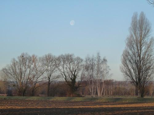 lune diurne.jpg