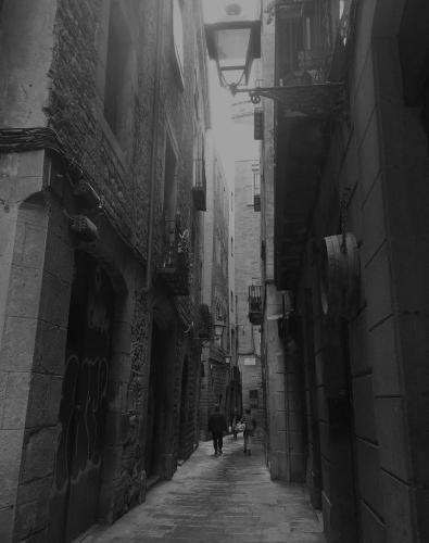 carrer 1.jpg