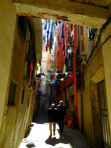 carrer 2.jpg