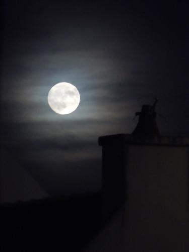 lune quiberon.jpg