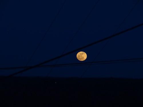 lune rousse 1.jpg